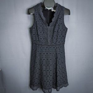 Ann Taylor LOFT Dress Size 8P Black Womens
